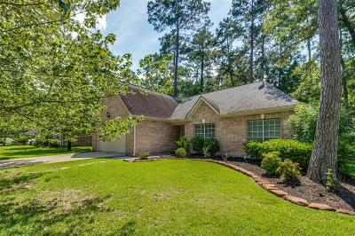 Conroe Single Family Home For Sale: 146 Park Way