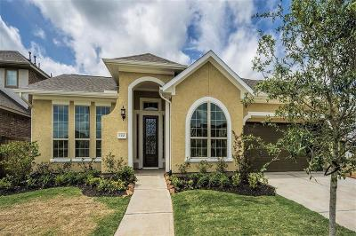 Sugar Land Single Family Home For Sale: 5330 Clouds Creek Lane