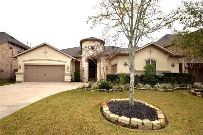 Katy Single Family Home For Sale: 27119 Barrington Lodge Lane