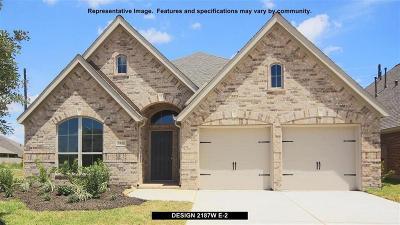 Shadow Creek Ranch Single Family Home For Sale: 2806 Sable Creek Lane