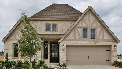 Spring Single Family Home For Sale: 28138 Knight Peak Drive