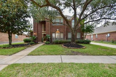 Houston Single Family Home For Sale: 19022 Appletree Hill Lane
