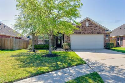 Pearland Single Family Home For Sale: 1925 Hollow Mist Lane
