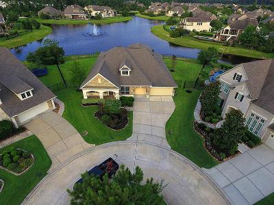 The Woodlands Creekside, The Woodlands Creekside 70's, The Woodlands Creekside Park, The Woodlands Creekside Park West Single Family Home For Sale: 14 Childres Pond Court