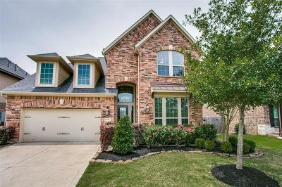 Riverstone Single Family Home For Sale: 6646 Miller Shadow Lane