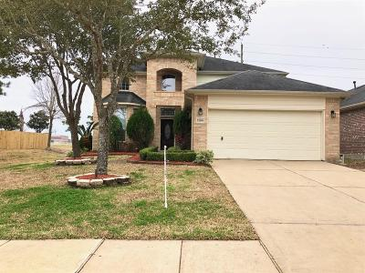 Pearland Single Family Home For Sale: 13008 Shallow Falls Lane