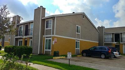Houston Multi Family Home For Sale: 12635 Ashford Meadow Drive #UnitE&F