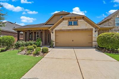 Conroe Single Family Home For Sale: 8162 Laughing Falcon Trail