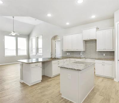 Conroe Single Family Home For Sale: 17004 Ash Leaf Way Drive