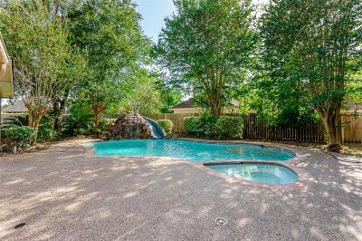Sugar Land Single Family Home For Sale: 4203 Austin Meadow Drive