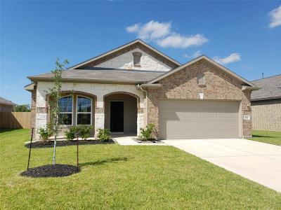 Texas City Single Family Home For Sale: 7816 Amber Court