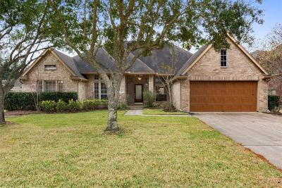 Friendswood Single Family Home For Sale: 2873 Love Lane