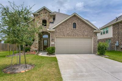 Dickinson Single Family Home For Sale: 205 Harbor Bend Drive