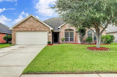 League City Single Family Home For Sale: 1003 Brazos Court