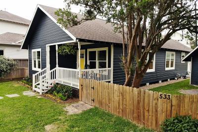 Houston Single Family Home For Sale: 533 Oxford Street