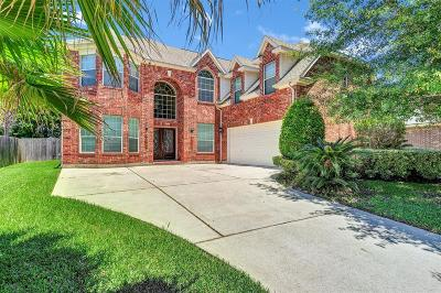 Tomball Single Family Home For Sale: 11422 Brown Trail