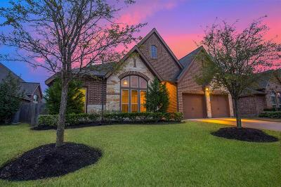 Pearland Single Family Home For Sale: 2009 Tide Rock Lane