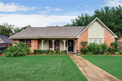 Houston Single Family Home For Sale: 7918 Skyline Drive