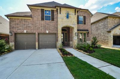 Humble Single Family Home For Sale: 16807 Big Reed Drive