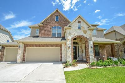 Tomball Single Family Home For Sale: 9515 Chaddington Court