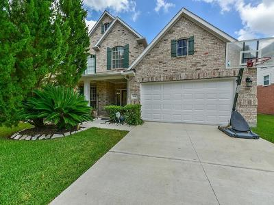 Sugar Land Single Family Home For Sale: 4843 Russett Lane
