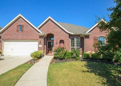 Sugar Land Single Family Home For Sale: 6107 Crawford Hill Lane