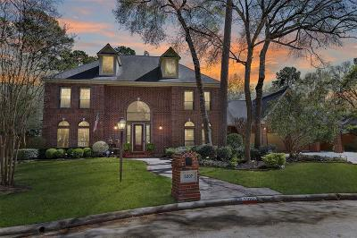 Houston Single Family Home For Sale: 5207 Royal Walk