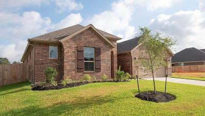 Conroe Single Family Home For Sale: 14136 Emory Peak Court