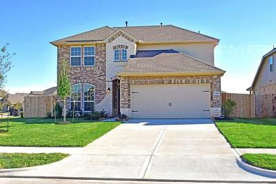 Rosenberg Single Family Home For Sale: 2403 Willow Falls Lane