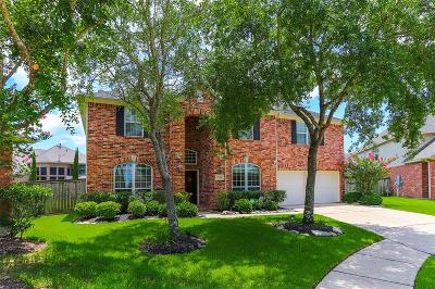 Pearland Single Family Home For Sale: 12501 Rocky Springs Court
