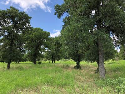 Lee County Country Home/Acreage For Sale: County Road 143