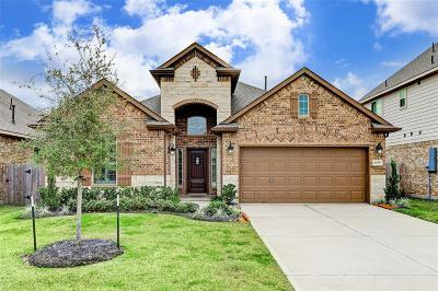League City Single Family Home For Sale: 4830 La Piedra Lane