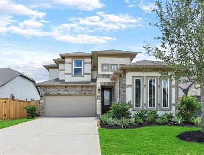 Missouri City Single Family Home For Sale: 2519 Owen Bend Drive