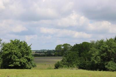 Grimes County Farm & Ranch For Sale: Tbd - Lot 6 Riva Ranch Fm 2562