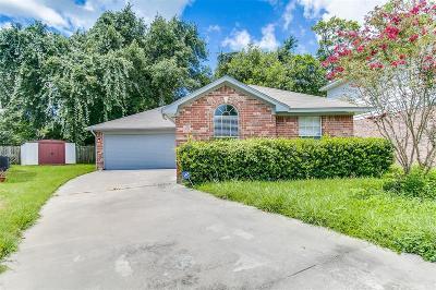 Texas City Single Family Home For Sale: 200 Terrace Drive