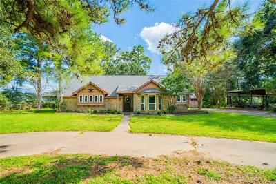 Spring Single Family Home For Sale: 1412 Sue Ann Lane