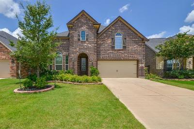Fulshear Single Family Home For Sale: 4910 Scenic Horizon Lane