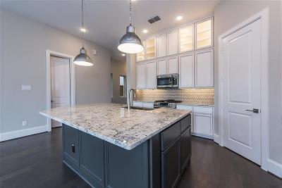 Houston Single Family Home For Sale: 1411 Arkley Way