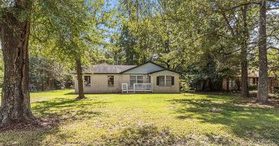 Porter Single Family Home For Sale: 16208 Pinewood Drive