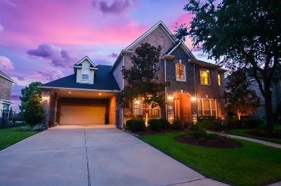 Houston Single Family Home For Sale: 16539 Obsidian Drive