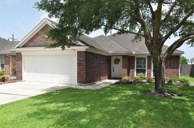 Kingwood Single Family Home For Sale: 22120 Knights Cove Drive