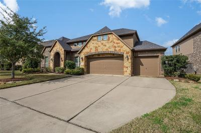 Single Family Home For Sale: 3811 Walker Falls Lane