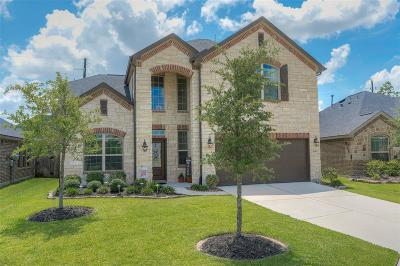 Spring Single Family Home For Sale: 3714 Paladera Place Court