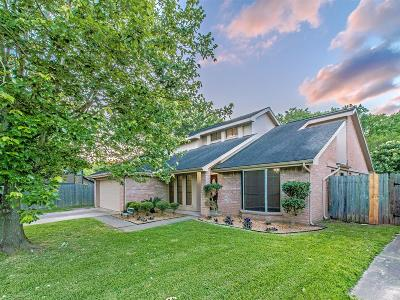 Sugar Land Single Family Home For Sale: 2907 The Highlands Drive
