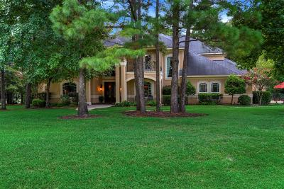 Spring Single Family Home For Sale: 4019 Fish Hook Court