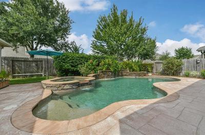 Houston Single Family Home For Sale: 17510 Sunbriar Lane