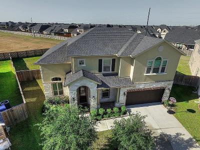 Fulshear Single Family Home For Sale: 27839 Halls Farms Lane