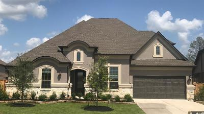 Tomball Single Family Home For Sale: 19130 Blue Hill Lane