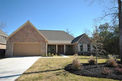Montgomery Single Family Home For Sale: 142 Canvas Back Drive