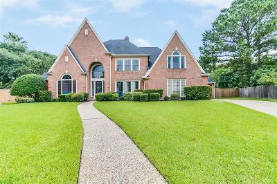 Houston Single Family Home For Sale: 15915 Bayou River Court